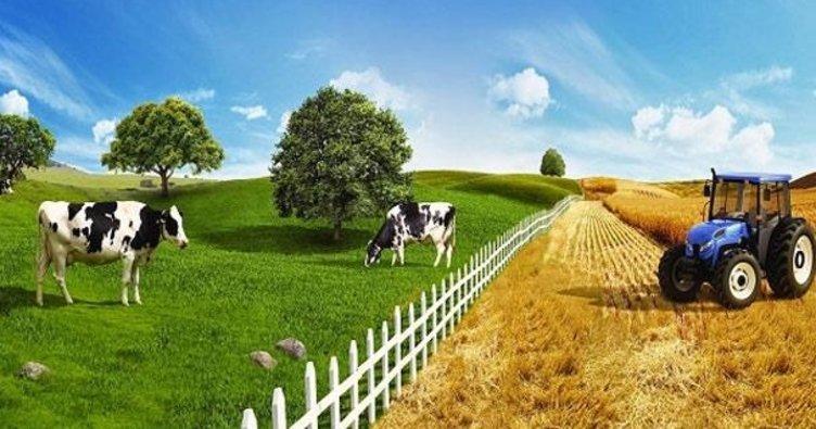 Tarımı holdingle bitirecekler