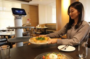 Fütüristik Robotlar Hayatı Kolaylaştırıyor