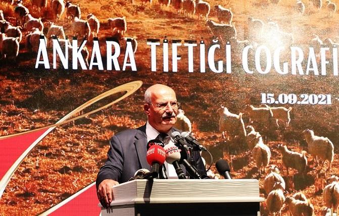 """ATO'dan, """"Ankara Tiftiği""""ne Coğrafi İşaret Tescili"""